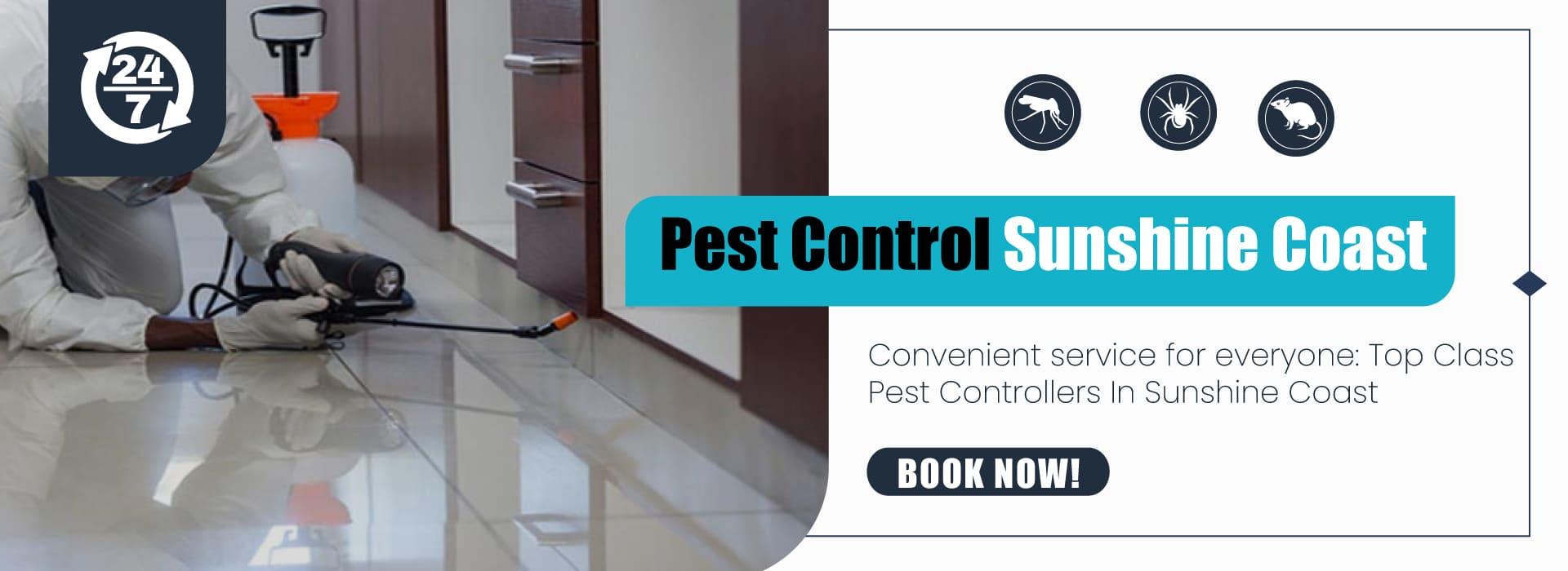 Best Pest Control Sunshine Coast